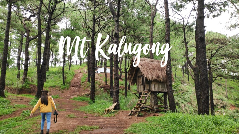 Mt. Kalugong Travel Guide: Journey On Its Eco Park and Cafe