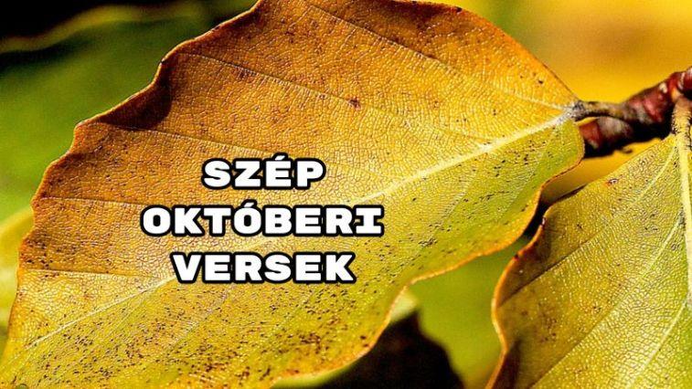 Nézd meg az összeállításunk, amely a 10. hónapról szól! Színes sorok, amelyek biztosan kizökkentenek a hétköznapokból! Íme a szép októberi versek!