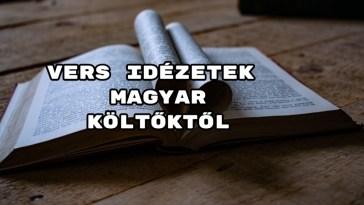 Vers idézetek magyar költőktől