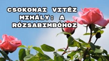 Jöjjön Csokonai Vitéz Mihály: A rózsabimbóhoz verse.
