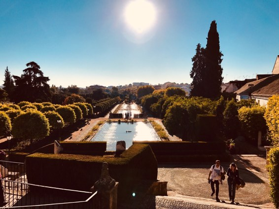 The sun-basked pond and fountain in the palace gardens.