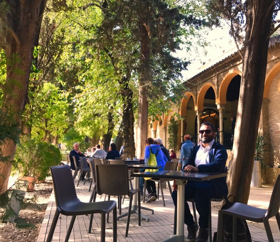 amazing cafe to relax in the royal gardens of alcazar.