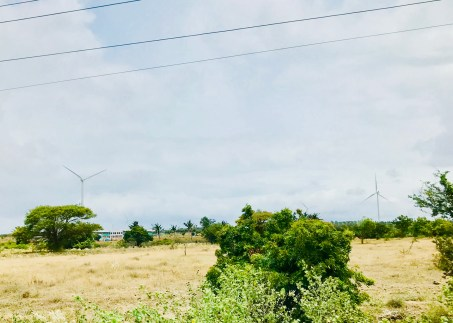The windmills on our way to Munnar Hills.