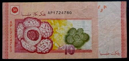 The currency note of Malaysia with the national flower.