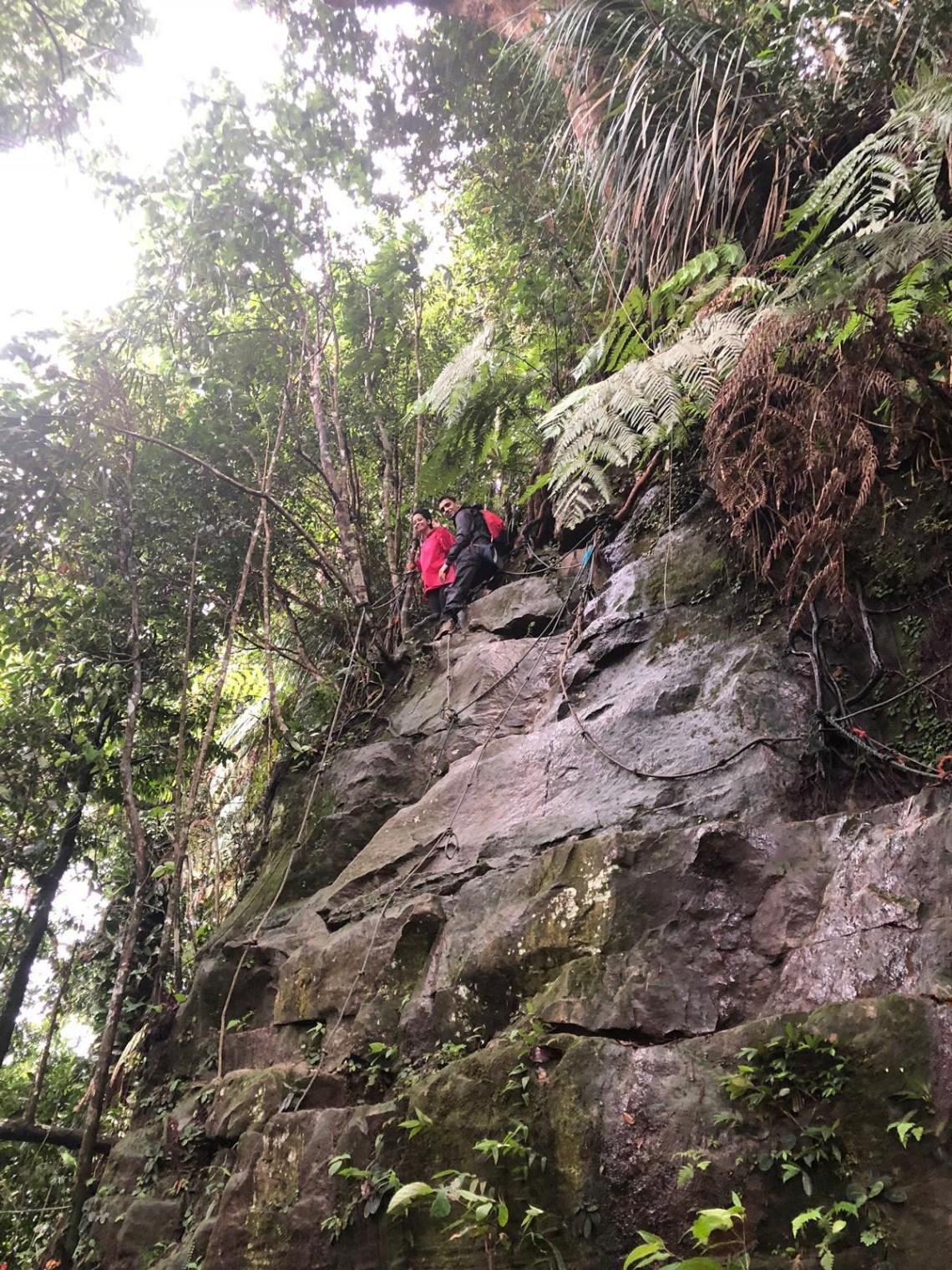 Gunung Panti Hike 11