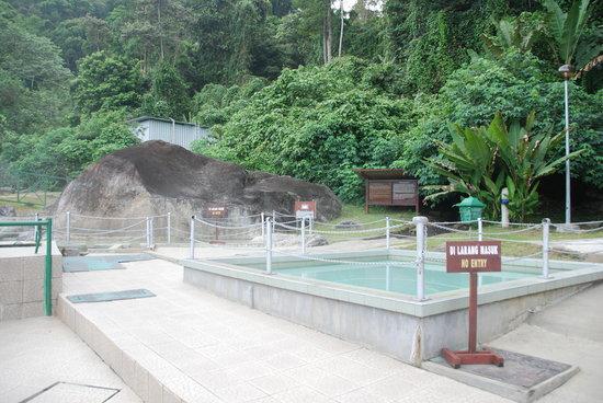 Kota Kinabalu Poring Hot spring.