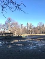 Boston Common (2/23/17)