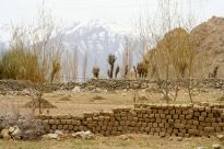 Typical farm landscape in the higher altitudes