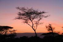Tanzanian Trip # 3 061