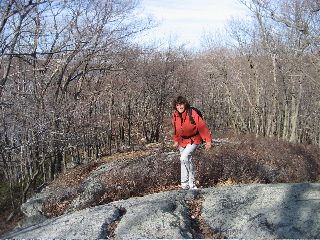 Hiking in Harriman Park
