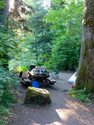 Our favorite campsite, Silver Fir.