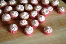 Pink Champagne Icing