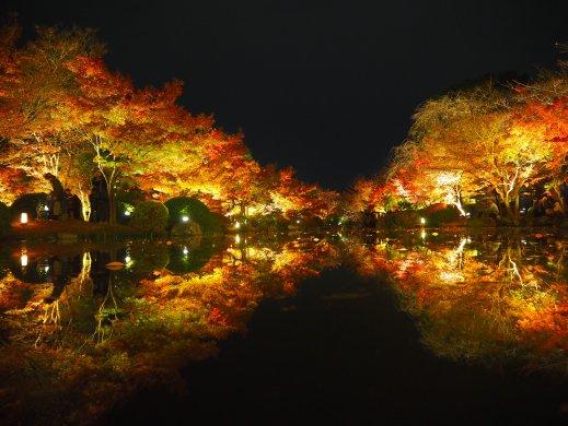 kyoto2019toji2