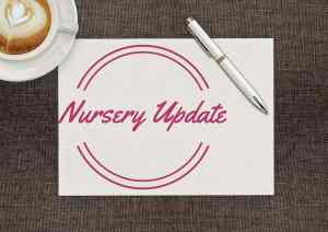July's Nursery Update