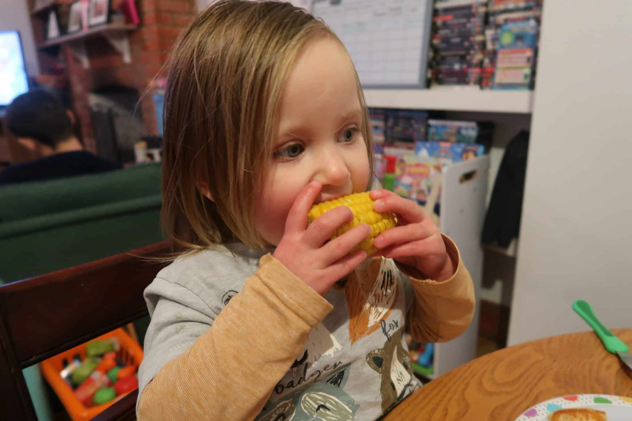 How Nursery Has Helped Our Fussy Eater