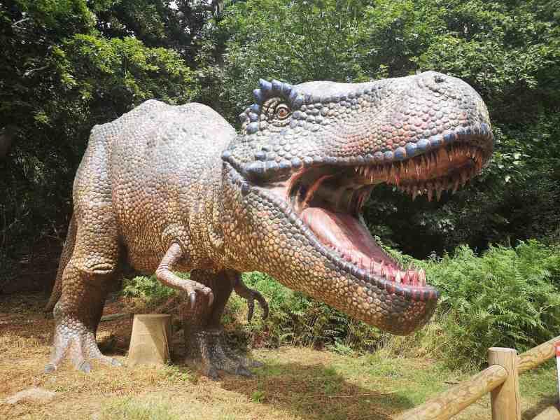 Summer At Roarr! Dinosaur Adventure