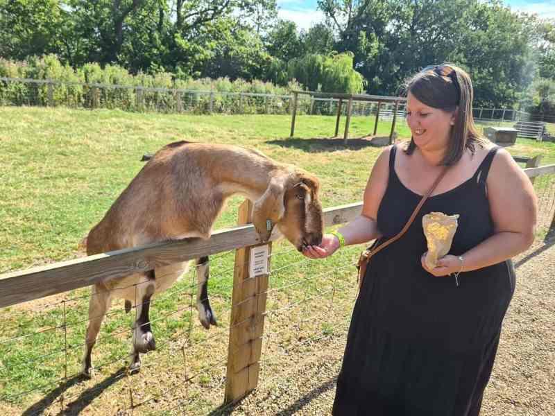 Wroxham Barns - me feeding a goat