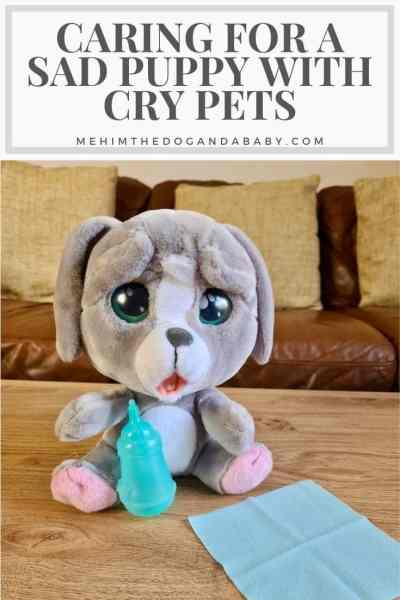 Caring For A Sad Puppy With Cry Pets