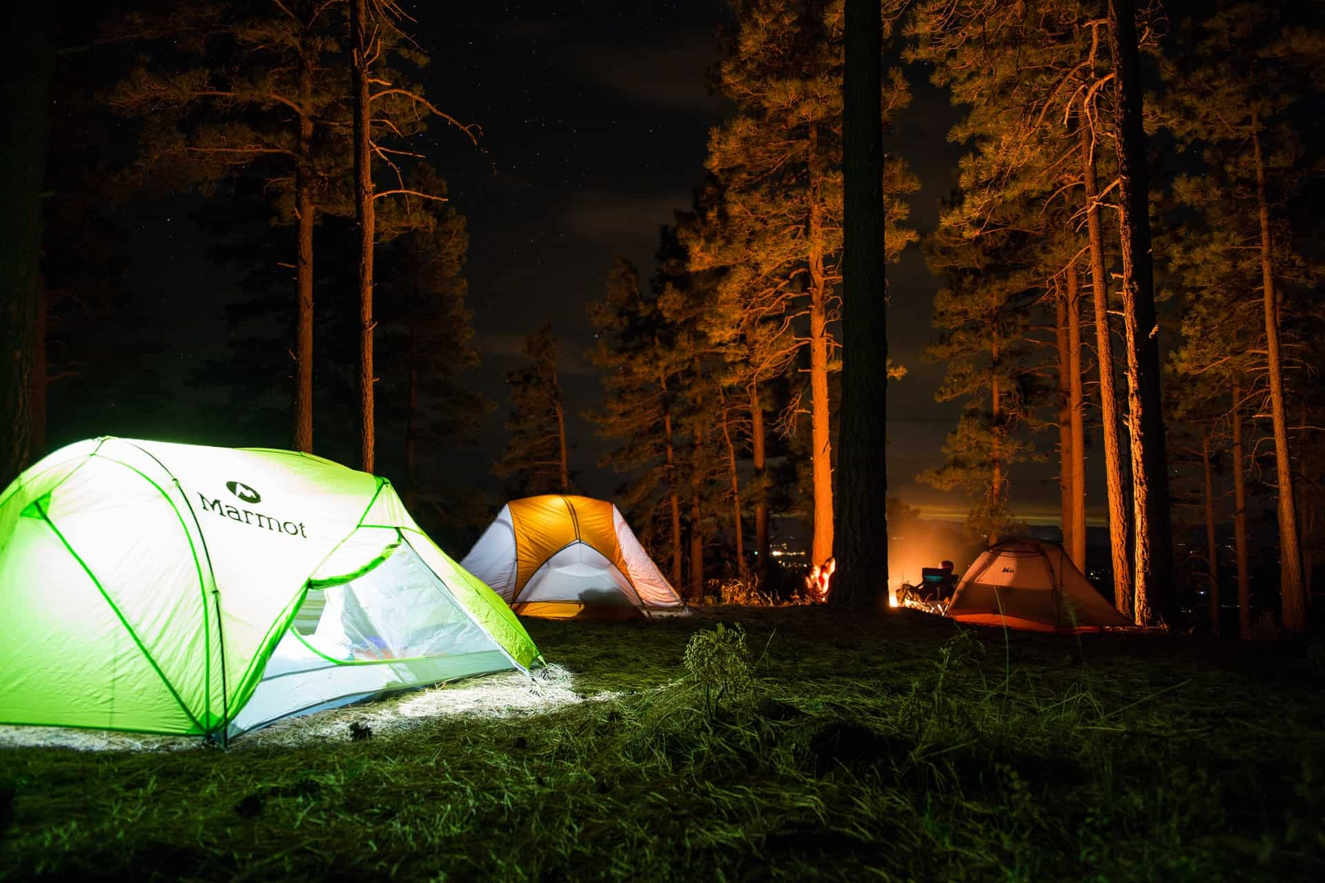 Lit up tents in the woods