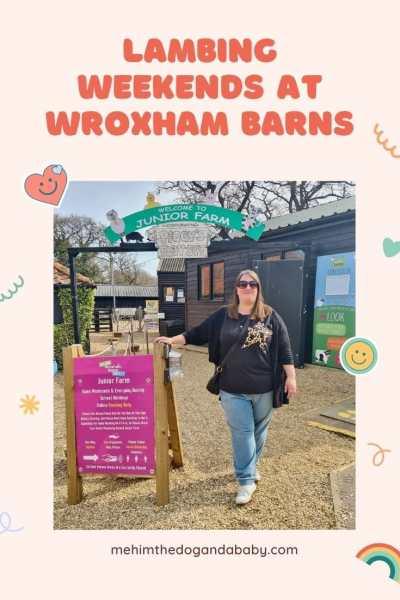 Lambing weekends at Wroxham Barns