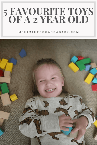 5 Favourite Toys Of A 2 Year Old