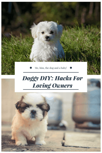 Doggy DIY: Hacks For Loving Owners