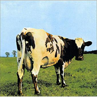 A la 6eme place de notre top 10 des meilleurs albums de Pink Floyd