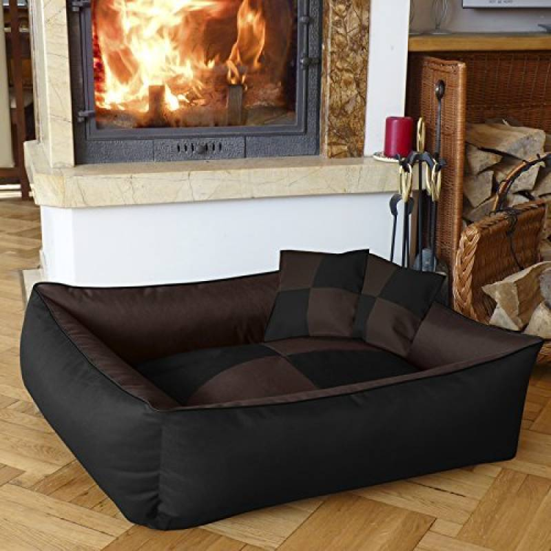 meilleurs coucouches