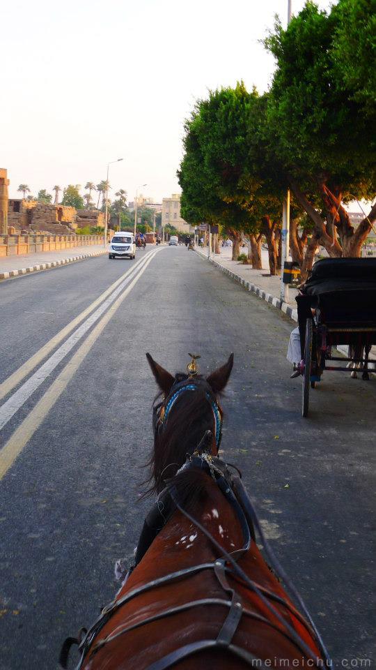 A horse carriage ride around Luxor.