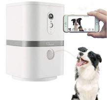 Hundekamera, Chihuahua, Hund kamera