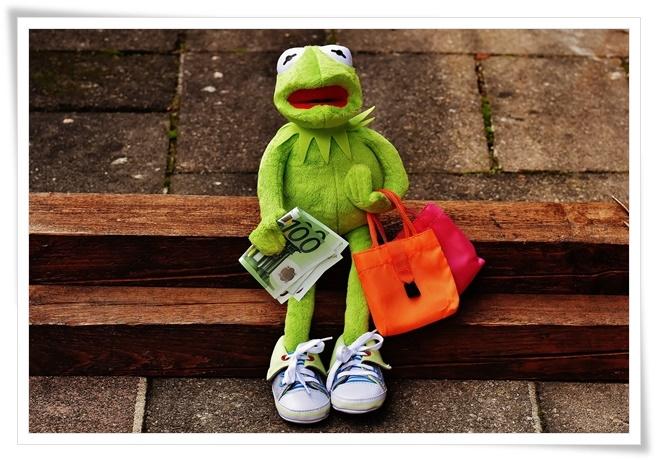 Shop-Lotse - Clever einkaufen und sparen - Frosch auf Shoppingtour