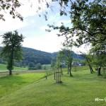Projekt Obstgarten – Die Umsetzung