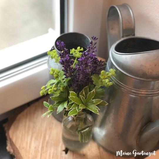 Strauß aus mit Lavendel und Frauenmantel