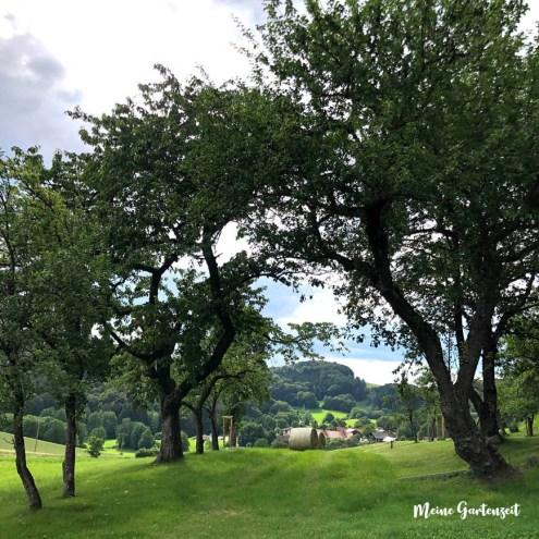 12tel Blick Obstgarten