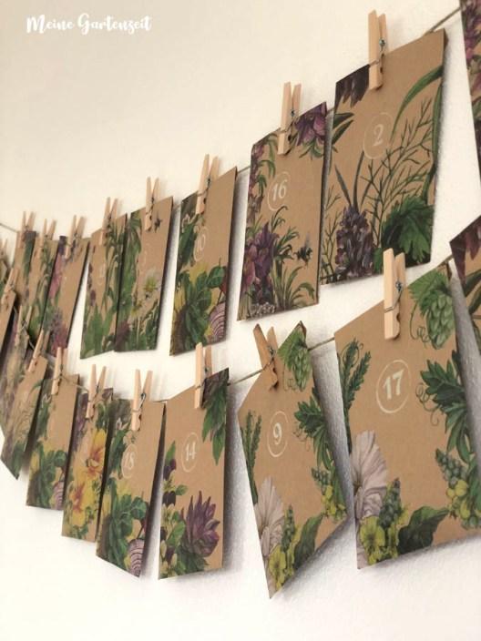 Adventskalender von Magic Garden Seeds