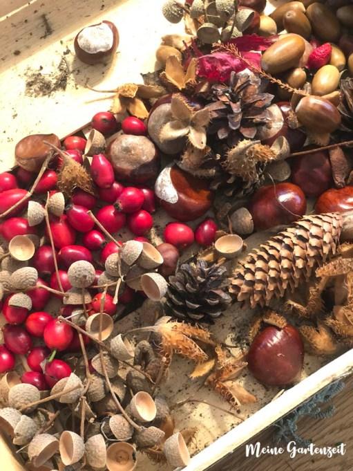 Herbstlicher Kranz mit Hagebutten