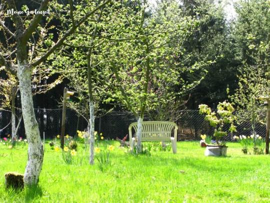 Papas Garten