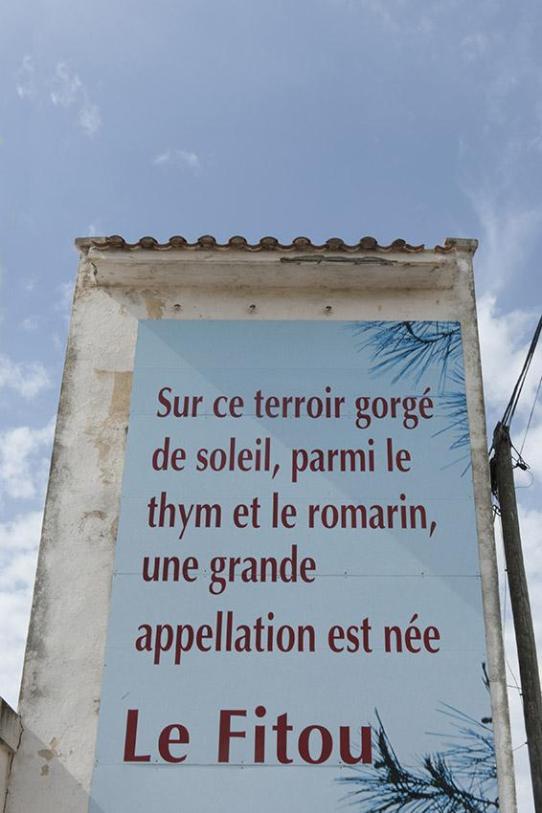 Fitou - eine Weinregion im Languedoc