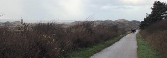 Fahrradweg mit Dünen im Hintergrund