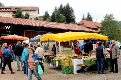 27-weideviehmarkt-in-wies-lockt-hunderte-besucher-an-wies-weideviehmarkt-2016-bauernmarkt-1