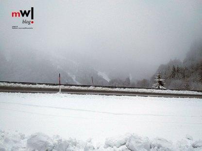 alle-jahre-wieder-im-winter-auf-dem-feldberg-im-schwarzwald-meinwiesental-wiesentaeler-zorz-pic-04
