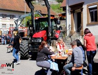 tegernauer-fruehjahrsausstellung-mit-dorffestcharakter-mit-Dorffestcharakter-1
