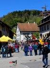 tegernauer-fruehjahrsausstellung-mit-dorffestcharaktermeinwiesental-mit-Dorffestcharakter-3
