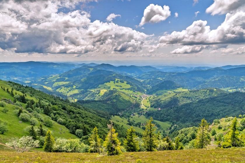 Der Premiumwanderweg Belchensteig verspricht ein Wandererlebnis von höchster Qualität.