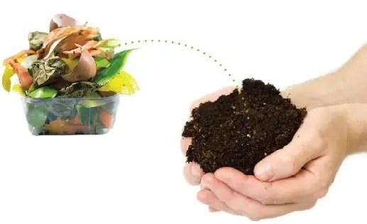 Resultado de imagem para fertilizante organico