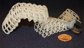 MIT desenvolve material que muda de fase e torna possível robôs metamórficos