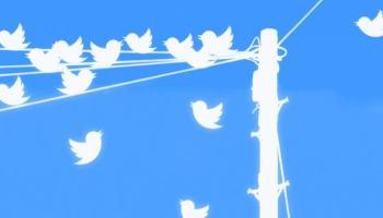 Twitter passará a marcar perfis que compartilham conteúdos sensíveis