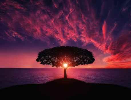 瞑想とタントラについて(2)