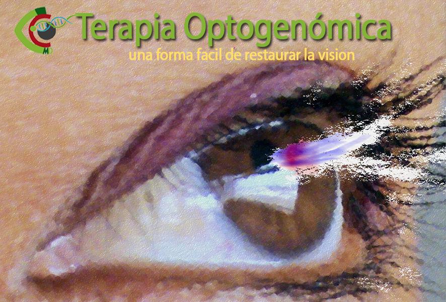 optogenomica1