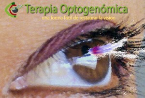 Retinitis pigmentosa, Optogenomica.
